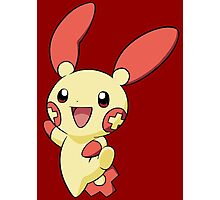 Plusle Photographic Print