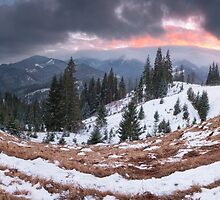 Evening in Carpathians. Ukraine by Sergey Ryzhkov