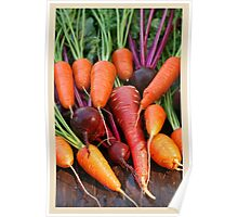 Harvest Organic Vegetables Poster