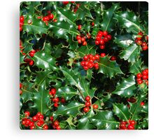 HOLLY 2 Canvas Print