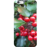 HOLLY 1 iPhone Case/Skin