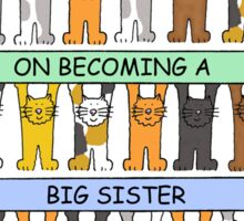 Congratulations on becoming a big sister. Sticker