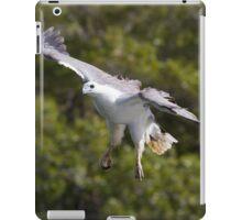 Low Flying  iPad Case/Skin