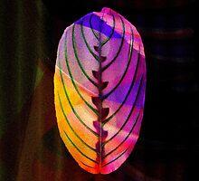 leaf (BLATT) by donphil