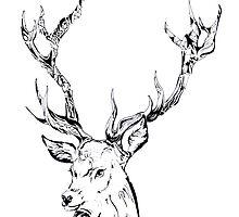 Ornate Deer by Lisa Pike