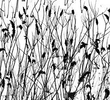 Winter Weeds by Carolyn  Fletcher