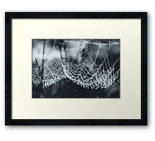 weight of water Framed Print