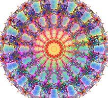 metamorphosis mandala II by donphil