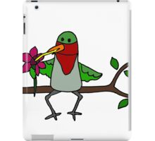 Cool Funny Hummingbird Sipping Nectar from Straw iPad Case/Skin