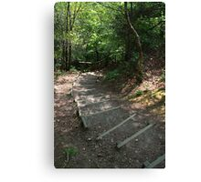 Walking down Leigh Hill Canvas Print