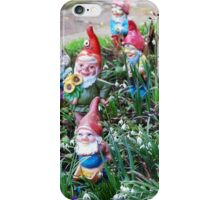 Garden Gnome VRS2 iPhone Case/Skin