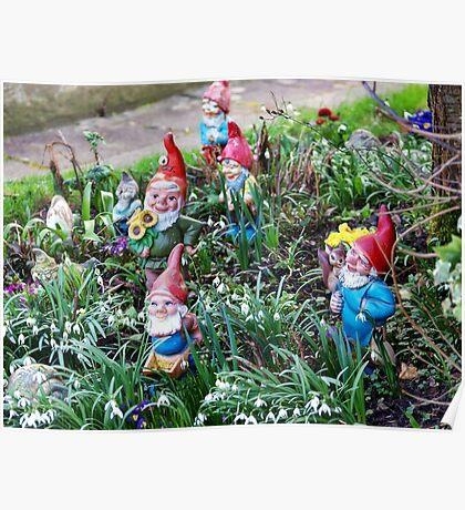 Garden Gnome VRS2 Poster