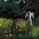 Alien in the Garden by Eileen McVey
