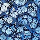 Blue Butterflies by Angelika  Vogel