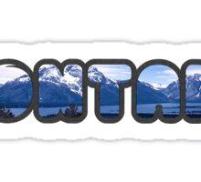Montana Bubbler With Big Sky Mountains Sticker