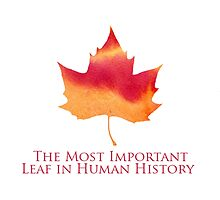 Doctor Who - The Most Important Leaf in Human History by TheQueenofOz