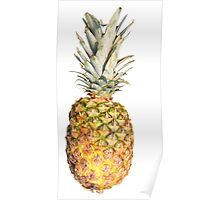 Pineapple Pizzazz Poster