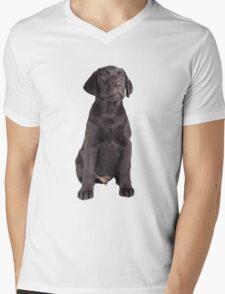 cute little labrador retriever T-Shirt