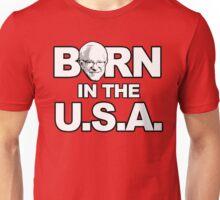 Bern in the U.S.A. Unisex T-Shirt