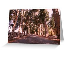 On the way to freedom - nature free spirit Greeting Card
