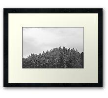 Simplistic Tree Landscape (FILM) Framed Print