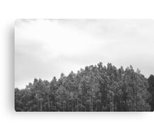Simplistic Tree Landscape (FILM) Canvas Print