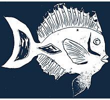 ETHNIC FISH (WHITE ON BLUE) Photographic Print