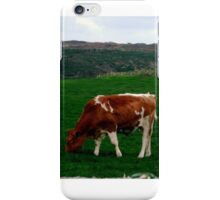 Young Bull on Meadow iPhone Case/Skin