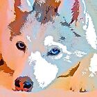 Husky in Watercolors - Private Collection by AspenWillow