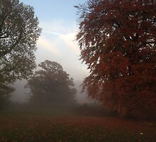 Alluring Autumn Mist by gillejan