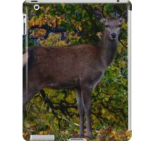 Red Doe iPad Case/Skin