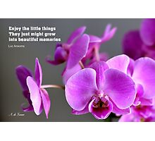 Purple lilac mauve orchid, inspirational quote  Photographic Print