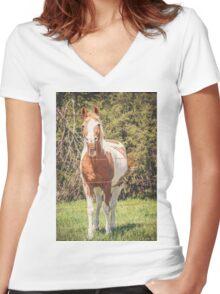 Funny Humor I Women's Fitted V-Neck T-Shirt