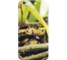Friendly Garter iPhone Case/Skin