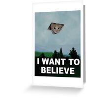I Want To Believe - Kitty UFO Greeting Card