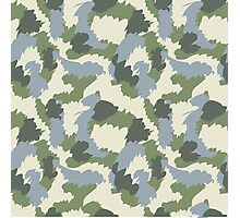 Green Gray Brown Camouflage Photographic Print