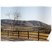 Fence Tree Mountain Poster