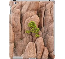 Tree and Geology iPad Case/Skin