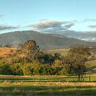 1008 Dargo Views by DavidsArt