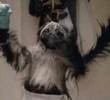 Puppy Monkey Baby Sticker