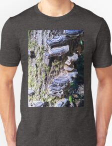 Redwood Forest Mushrooms Unisex T-Shirt
