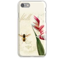 Natural History Sketchbook I Botanical study bumble bee, tulip iPhone Case/Skin