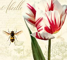 Natural History Sketchbook I Botanical study bumble bee, tulip by Glimmersmith