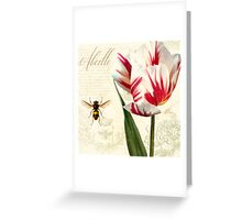 Natural History Sketchbook I Botanical study bumble bee, tulip Greeting Card