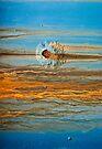Rusty Crustacean by Barbara Ingersoll