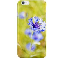 Bachelor Buttons Glowing iPhone Case/Skin