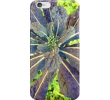Kale Star iPhone Case/Skin