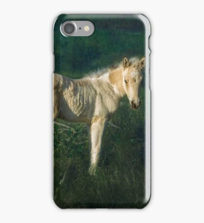 Little Blue-Eyed Filly iPhone Case/Skin
