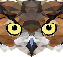 OWL polygon   by AidanS
