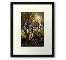 As that ship sinks slowly in the east and the sun...... Framed Print